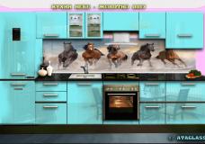 Animals-0017