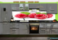Food 0048